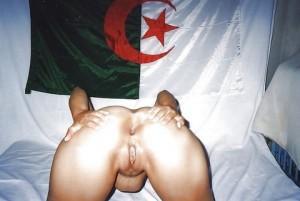 Grosse pute arabe des Moulins, à humilier et enculer gratos